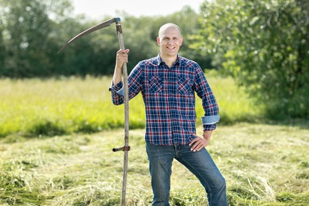 haymaking: Man mowing old fashioned way with a scythe