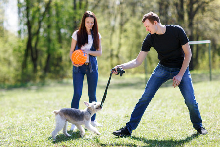 Young couple train a dog in a summer park