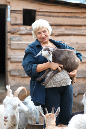 yeanling: elderly woman with a lamb goats Stock Photo