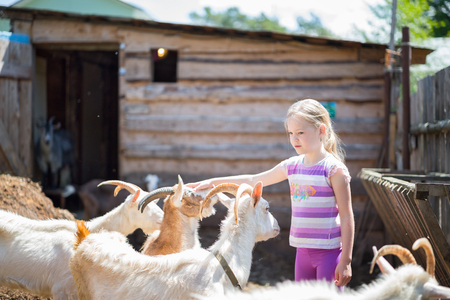 kindred: little girl with goat on the farm Stock Photo