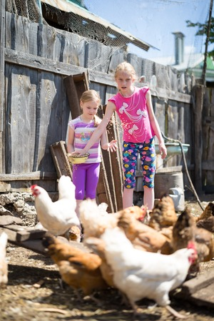 kindred: children work on the home farm
