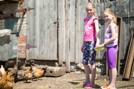 sissy: two sisters children fed chickens grain on the farm Stock Photo
