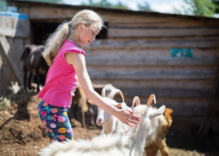 sissy: children playing with a goat at farm Stock Photo