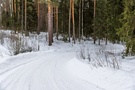 slippery road in the woods on a frosty day Stock Photo