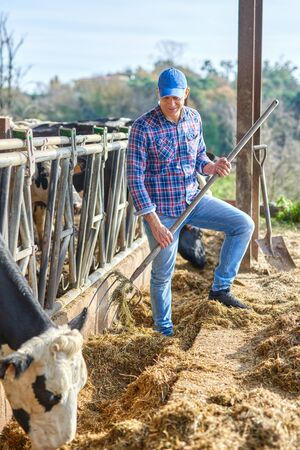 man works on a livestock ranches