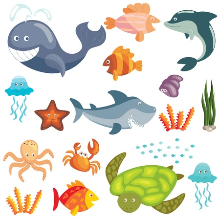 algas marinas: Conjunto de animales de dibujos animados lindo del mar sobre fondo blanco