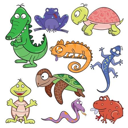 chameleon lizard: Hand-drawn cute cartoon reptiles and amphibians illustration