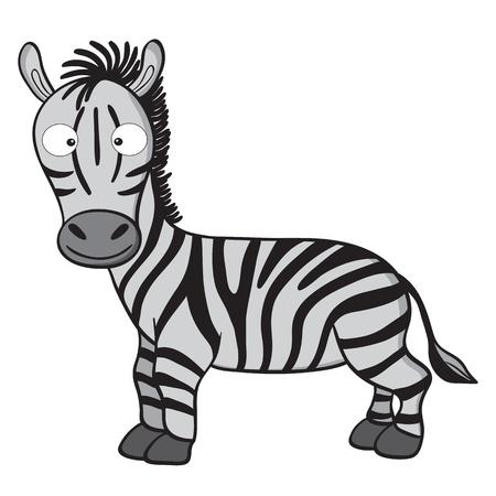 herbivorous animals:  illustration of smiling cute cartoon zebra.