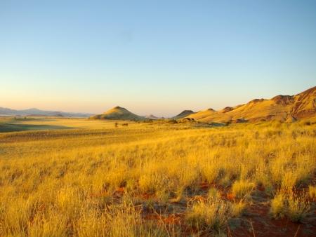 namib: Namib Rand