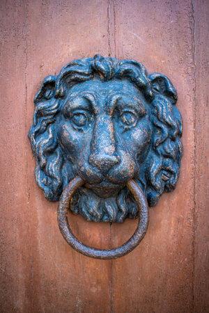 An old door knocker in the shape of a lion head on a wooden door Standard-Bild