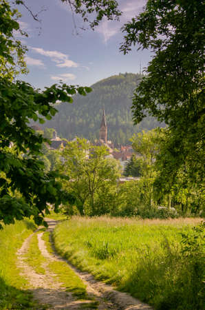 Meadow landscape with small town in south Germany