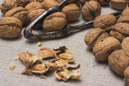 Closeup of Walnuts and nutcracker on a fabric background