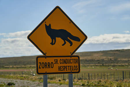yellow and black road sign showing a fox, and saying zorro, slow down, standing in patagonia, south America