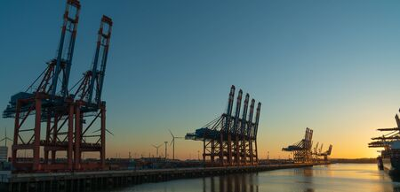 Many cranes in the hamburg harbour in the sunset