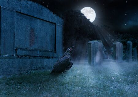 crow sits on a cemetry in front of a gravestone