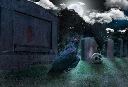 a crow sits on a cemetry in front of a tombstone