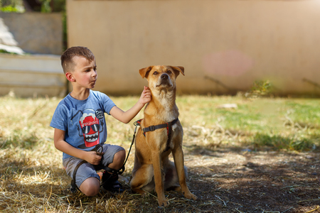 boy eight years of playing with the dog