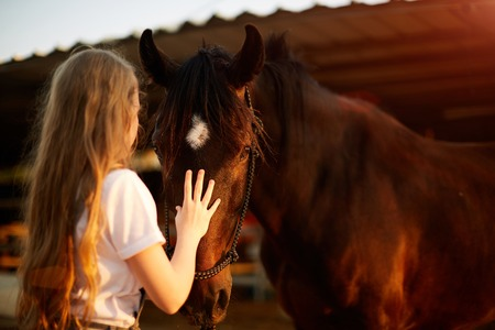 Girl taking care of her horse Фото со стока