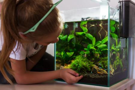 Cute little girl looking at fish in aquarium Stock fotó