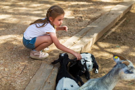 adorable little girl with little goats at the zoo
