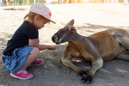 cute young girl and kangaroo in the zoo in Israel