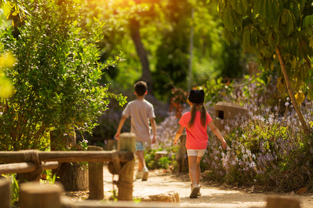 Rear view of brother aged ten and sister aged five walking in park