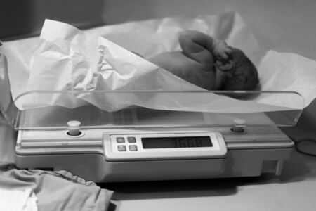 Newborn baby been examined on the balance immediately after childbirth