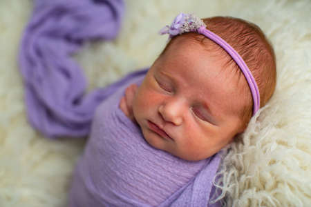 Sleeping, nine day old newborn baby girl swaddled in a violet wrap Stok Fotoğraf