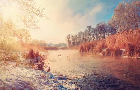 wonderful winter landscape. Frosty sunny morning on the river. wild ducks flying over a river in fog. color in nature. Winters Tale. winter scene.