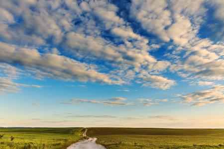 小麦と農地を通る空の田舎道。夕暮れ時の田舎の風景。 写真素材