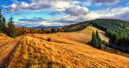 Magnifique paysage de montagne d'automne. majestueux, nuages ??couvertes dans la lumière du soleil. forêt d'épinettes sur la colline de la montagne en journée ensoleillée.