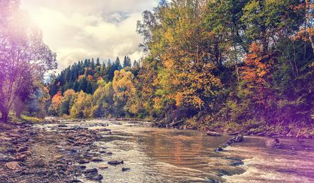 가을 놀라운 풍경. 포리스트의 산 강 너머로 다채로운 나무. 복고 스타일입니다. 스톡 콘텐츠