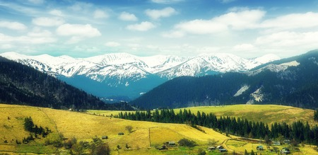 Awesome alpine highlands in sunny day. Spring Landscape in the mountains with perfect sky. 免版税图像