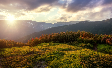 Majestic Sunset in the mountains,hills under warm sunlight. Amazing athmospheric Landscape with overcast sky. Nature background. 스톡 콘텐츠