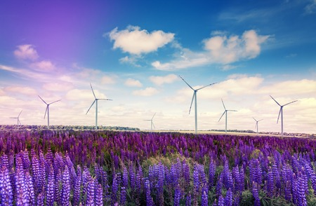 fantastic summer landscape. Windmills for electric power production. on the field of blue flowers with perfect sky. creative image. ecology concept. rural nature landscape 写真素材 - 124425304