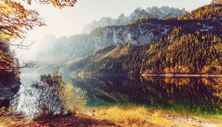 A magnificent panorama of the mountains at Vorderer Gosausee lake. Amazing Alpine Valley with fairy lake, with Azure Water.  surrounded by Rocky Mountains. under sunlit. Wonderful Sunny Landscape Stok Fotoğraf