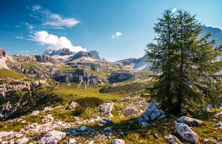 Fairytale mountain valley of Tre Cime di Lavaredo National park under sunlit. Amazing Natural background. Impressive Wild area. Panoramic view at Dolomites Alps. popular hiking destination in world
