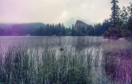 Wonderful Alpine lake with morning foggy. Amazing Summer Landscape of High Tatras. Splendid lake Strbske Pleco. Famous World place.