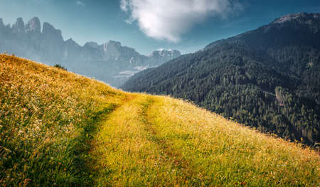 Awesome alpine highlands in sunny day. Alps mountain meadow tranquil summer view. Landscape with Fresh grass, perfect sky and rock mountains Dolomites under bright sunlight. Amazing Nature Scenery Standard-Bild