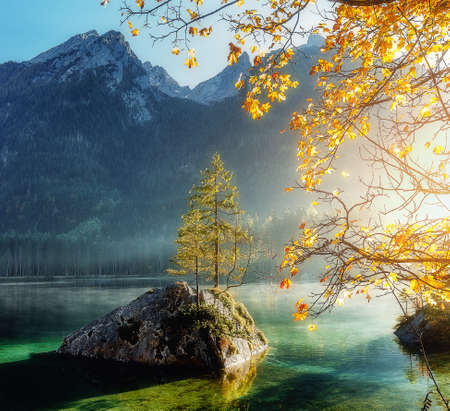 Impressively beautiful nature scene, pine trees on a rock island glowing in sunlight. Lake Hintersee. Nationalpark Berchtesgadener Land, Upper Bavaria, Germany. Picture of wild area. Nature Landscape