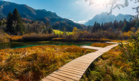 Awesome Alpine Highland in sunny day. Wonderful Slovenia on kranjska Gora and the natural reserve of Zelenci. Beautiful landscape of nature at lake Zelenci. Amazing Julian Alps. Mountain scenery. 版權商用圖片