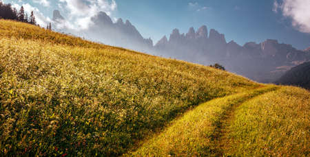 Beautiful view of idyllic alpine mountain scenery with fresh green grass on meadows and majestic mountain peaks on a beautiful sunny day with blue sky in springtime. Amazing Nature Scenery.