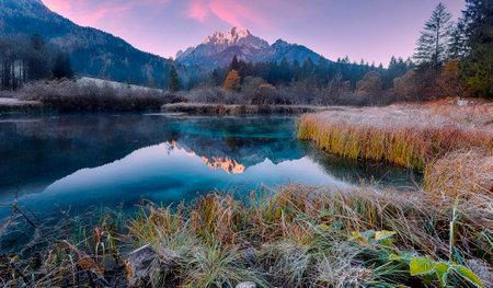 Awesome Alpine Valley during sunset with majestic mountain peak on background Scenic image of nature at lake Zelenci in autumn. Zelenci nature reserve. Triglav national park. Kranjska Gora, Slovenia 版權商用圖片