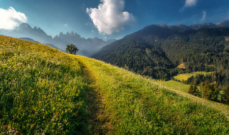 Scenic image of Dolomites mountains. agricultural field in alpine highlands at sunset. Sunrise in the mountain valley. Beautiful natural landscape in summer time