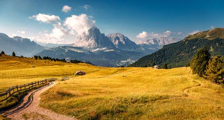 Beautiful alpine countryside. Awesome Alpine landscape in sunny day. Amazing Nature Scenery of Dolomites Alps. Epic Scene in the mountains place near Seceda peak. Val Gardena. Dolomiti alp. Italy