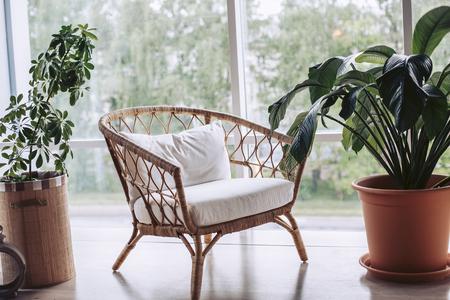 Wicker white armchair surrounded by green flowers Standard-Bild