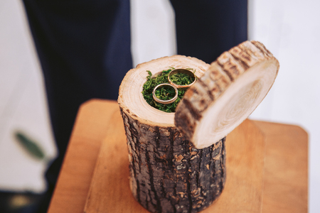 Decorative element for the wedding. Casket for wedding rings from a natural stump with moss