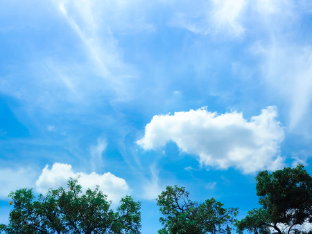 Fantastic soft white clouds against blue sky with trees abstract background.