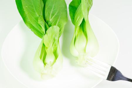 mini farm: Green vegetable