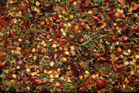 some herb and chili mix forming a background pattern Stock Photo - 8788925